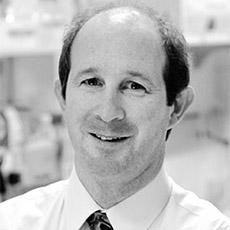 Todd E. Golde, MD, PhD